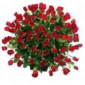 100 szál vörös rózsa  kosárban