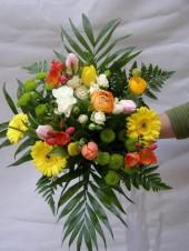 Ranunculus / Boglárka