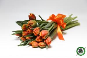 15 szálas tulipáncsokor
